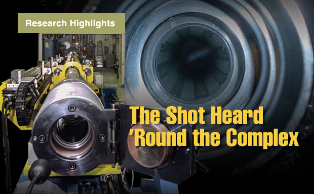 Article title: The Shot Heard 'Round the Complex.