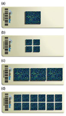Photograph of four possible microarray configurations.
