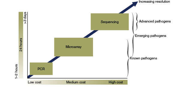 Graphic depecting how PCR, DNA sequencing and LLMDA compare in cost and time.