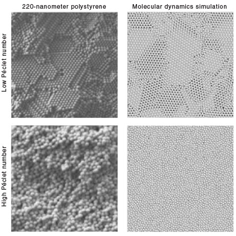 A comparison between experiments using polystyrene beads and molecular dynamics simulations shows the effect of electric field (high or low Péclet number) on the microstructure of the deposited material. The Péclet number can be used to control microstructure over a range of particle sizes.