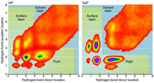 Simulations indicate the density of hydrogen bonds formed at the interface between (left) water and InP, and (right) water and GaP, based on the distances of the bond-donor and bond-acceptor species from the material surface. Purple is the region of highest density. Blue and green outline the surface-adsorbing layer and the first layer of solution, respectively. The hydrogen bonds are less structured and exhibit more topological variety for the InP–water interface, which consequently is more fluid and dynamic than the GaP–water interface.