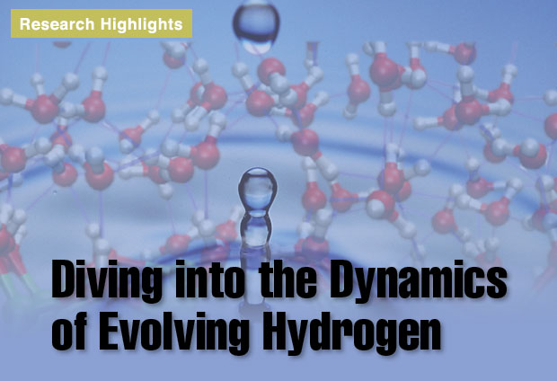 Article title: Diving into the Dynamics of Evolving Hydrogen