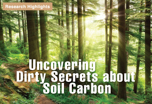 Uncovering Dirty Secrets about Soil Carbon