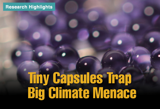 Article title: Tiny Capsules Trap Big Climate Menace