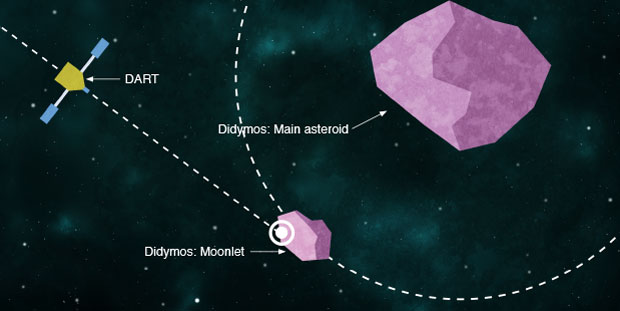 The proposed Double Asteroid Redirection Test (DART) will provide the first test of the deflection of an actual asteroid using kinetic impact. Earth-based telescopes will observe the binary asteroid system Didymos as the DART spacecraft impacts the smaller of the two asteroid bodies, which is only 150 meters across.