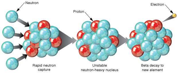 R-process nucleosynthesis produces heavy elements from lighter seed nuclei. In this process, rapid neutron captures (left) produce heavier isotopes of the seed element, until an unstable isotope with a beta-decay lifetime shorter than the neutron capture rate is formed (center). Beta decay of a neutron, which produces a new proton and an emitted electron, transforms the unstable neutron-heavy seed element isotope into a very heavy isotope of the new element (right). Eventually, when the neutron flux declines, these very heavy species will decay back to stability, producing the most neutron-rich stable isotope of the newly created element.