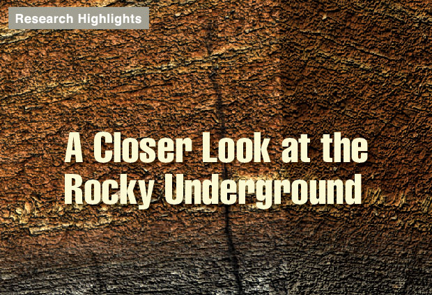 Article title: A Closer Look at the Rocky Underground