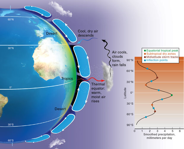 (left) Wind circulation patterns in each hemisphere help transport moist equatorial air toward the poles. These loops are driven by such properties as Earth's size, rotation rate, atmospheric depth, and heating. (below) A smoothed map of satellite data reveals distinct zones of wet and dry land produced by the circulation patterns. Livermore researchers used this information to detect changes in the location and intensity of global precipitation over the past three decades. (Rendering by Kwei-Yu Chu.)