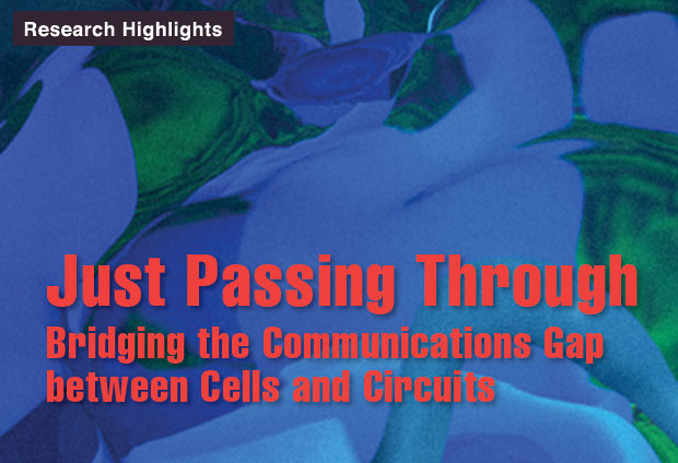 Article title: Just Passing Through: Bridging the Communications Gap Between Cells and Circuits