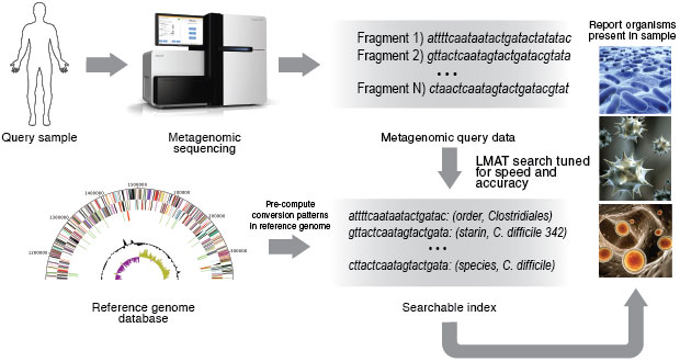 Using LMAT, nucleic acids extracted from a query sample undergo sequencing to recover short genetic fragments. Fragments are searched against an index to identify organisms present.