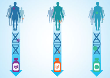 As depicted in this graphic, the goal of the Precision Medicine Initiative is to help physicians choose the best cancer treatment for patients by taking into account the individual variability in their genes, the microbes in and on their bodies, and their physical environment, health history, lifestyle, and diet. (Image courtesy of the National Cancer Institute.)