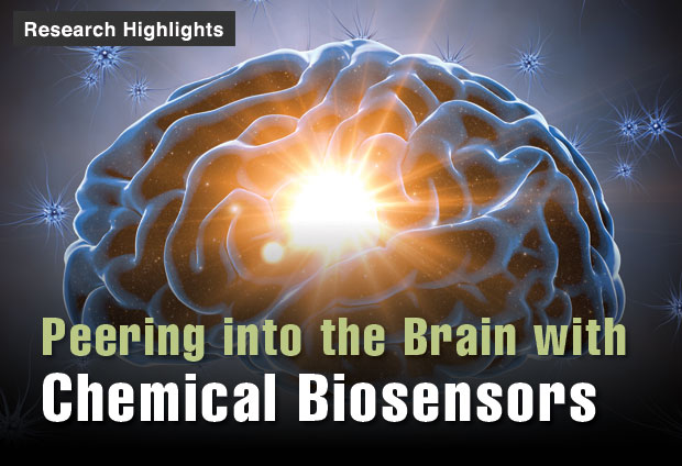 Peering into the Brain with Chemical Biosensors