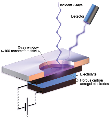 To enable measurements of supercapacitor electrodes while they operate, Livermore researchers built a vacuum-compatible cell that measured 2 centimeters in diameter and contained a tiny supercapacitor (5 millimeters tall and 0.1 millimeter thick) placed in an aqueous solution of sodium chloride, the electrolyte.