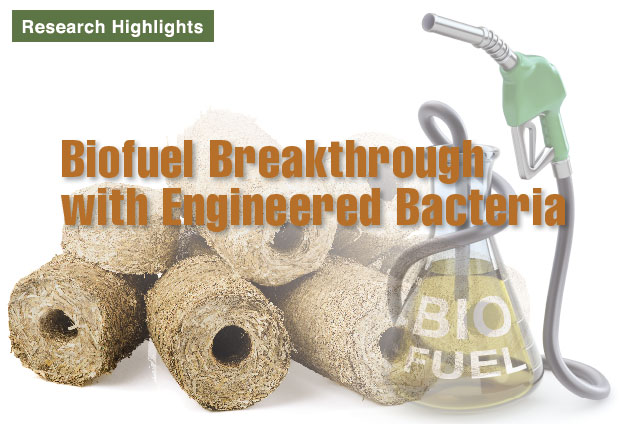 Article title: Biofuel Breakthrough with Engineered Bacteria
